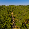 Summer with the Lakes and Forests 8 : Aerial Photography from Project Aerospace