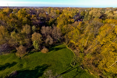 Deep Autumn Field and Forest  11 : Aerial Photography from Project Aerospace