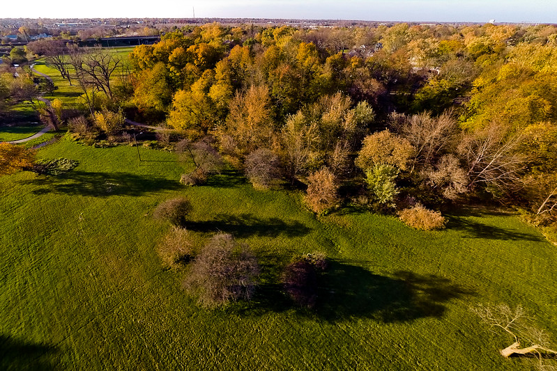 Deep Autumn Field and Forest  13 : Aerial Photography from Project Aerospace