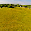 High-noon Summer at the Park 4 : Aerial Photography from Project Aerospace