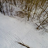 Tall Thin Trees in Snow 1 : Aerial Photography from Project Aerospace