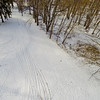 Tall Thin Trees in Snow 6 : Aerial Photography from Project Aerospace