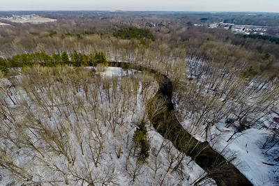 Tall Thin Trees in Snow 4 : Aerial Photography from Project Aerospace