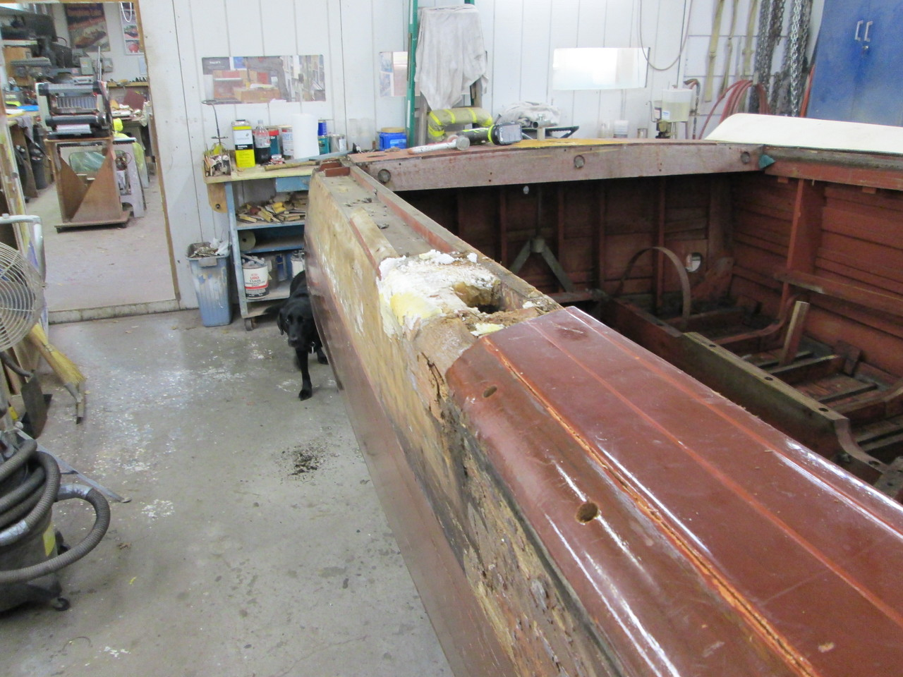 Starboard fin removed.