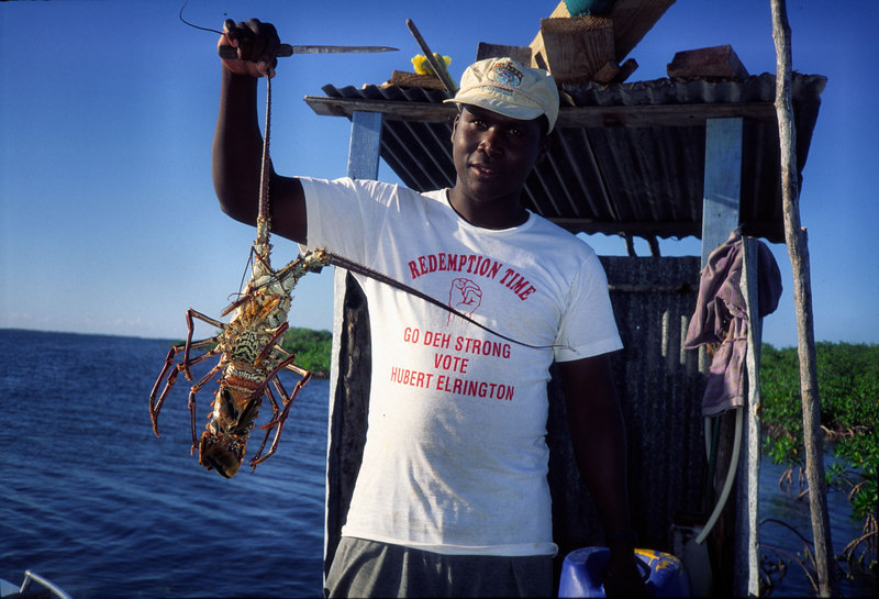 Lobster Fisherman Turneffe Belize