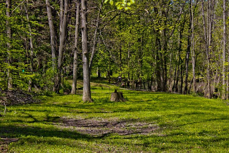 Richfield County Park in Michigan 34