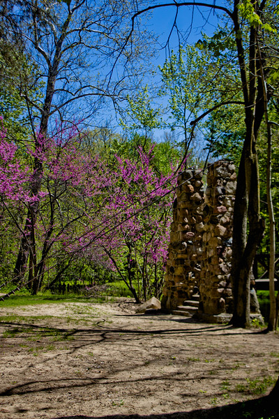 Richfield County Park in Michigan 29