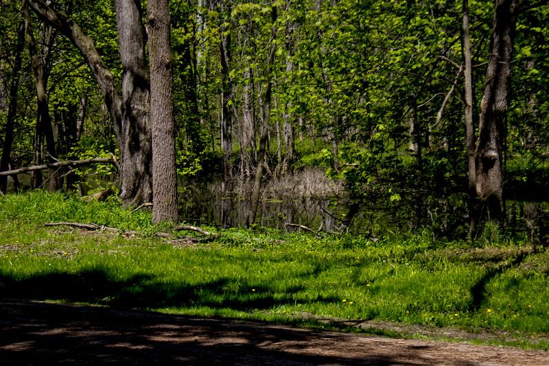 Richfield County Park in Michigan 32