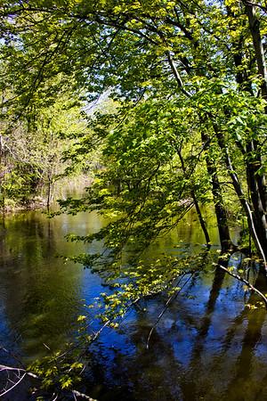 Richfield County Park in Michigan 21