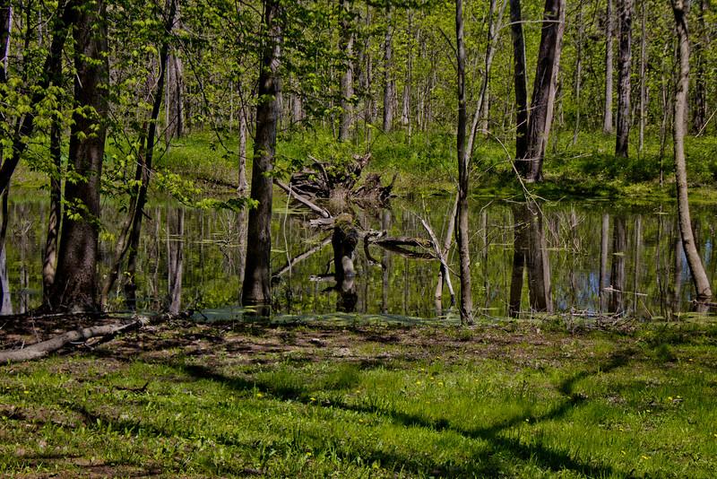 Richfield County Park in Michigan 35