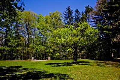 Richfield County Park in Michigan 7