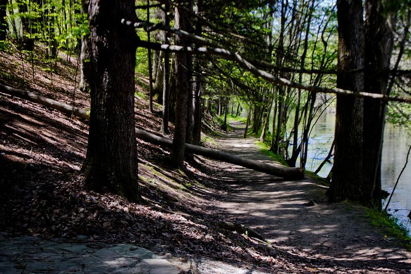 Richfield County Park in Michigan 55