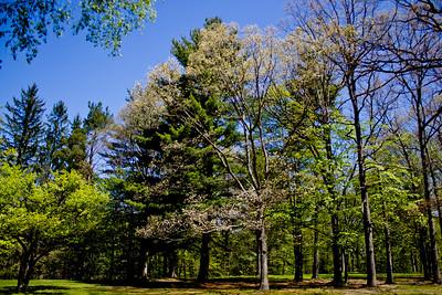 Richfield County Park in Michigan 6