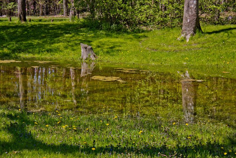 Richfield County Park in Michigan 39