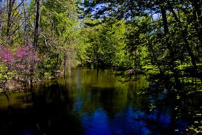 Richfield County Park in Michigan 23