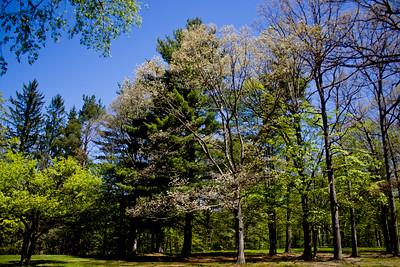 Richfield County Park in Michigan 5
