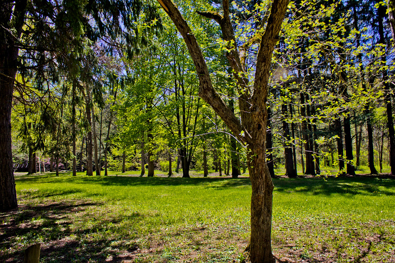 Richfield County Park in Michigan 47