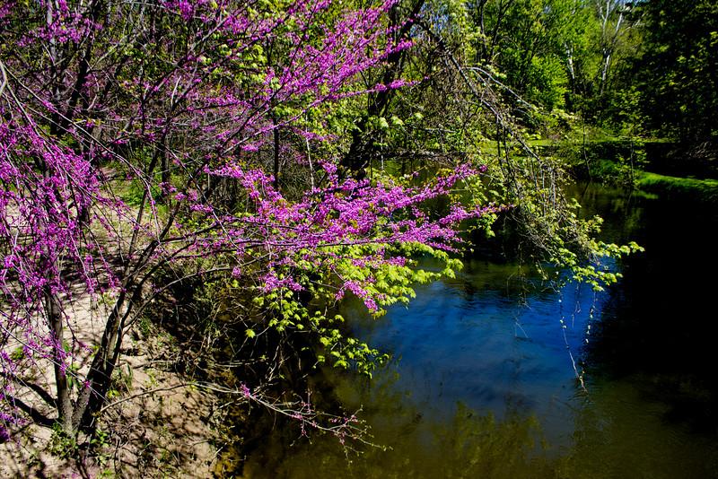Richfield County Park in Michigan 51