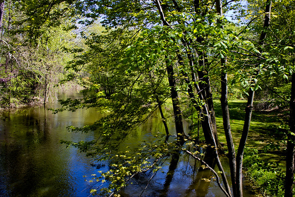 Richfield County Park in Michigan 22