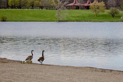Seven Lakes Michigan State Park 18