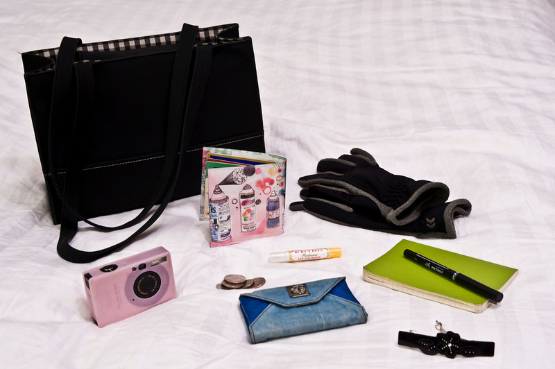 17 january. wallet, gloves, notes, barrette, business cards, camera, muni fare, and lip shimmer are what's in my bag.