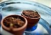 18 may. basil grows.