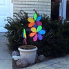 <b>Day 126—6 March 2012 Windy city</b>  My phone camera (and my lack of time to attend to settings) doesn't portray this moment accurately. Truthfully, all three of our neighbors' wind decorations were spinning vigorously when I was out for my walk this afternoon. The temperature was a delightful 61, despite a wind so strong that I worried about losing my baseball cap. Welcome, spring! Won't you stay for a while?