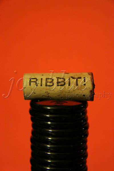 <b>Day 74—14 January 2012 Ribbit!</b>  I wish I could remember something about the bottle of wine from which this cork came. From whom did we receive it? What varietal? Was it tasty? On what occasion did we drink it? I guess, ultimately, it matters little—I <i> love</I> the cork! It makes me smile. It's currently living in My Room (for which I really need a better name), where I can be entertained by it regularly.