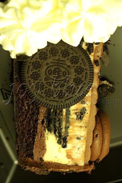 <b>Day 272—30 July 2012 Oreo Dream Extreme cheesecake</b>  You didn't think we'd miss National Cheesecake Day, did you?! NTS had a better offer; but, the rest of us enjoyed dinner at The Cheesecake Factory, and brought home sweet treats. DH and I are going to try the just-introduced flavor as soon as I finish working tonight.