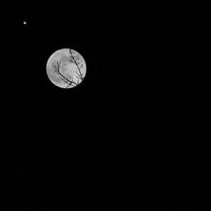 Wednesday, November 28, 2012:  Moon in Rohini