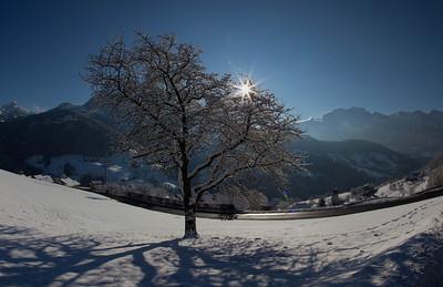 362/365 - Snowscapes