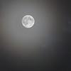 265/365 - A Night full of Dreams
