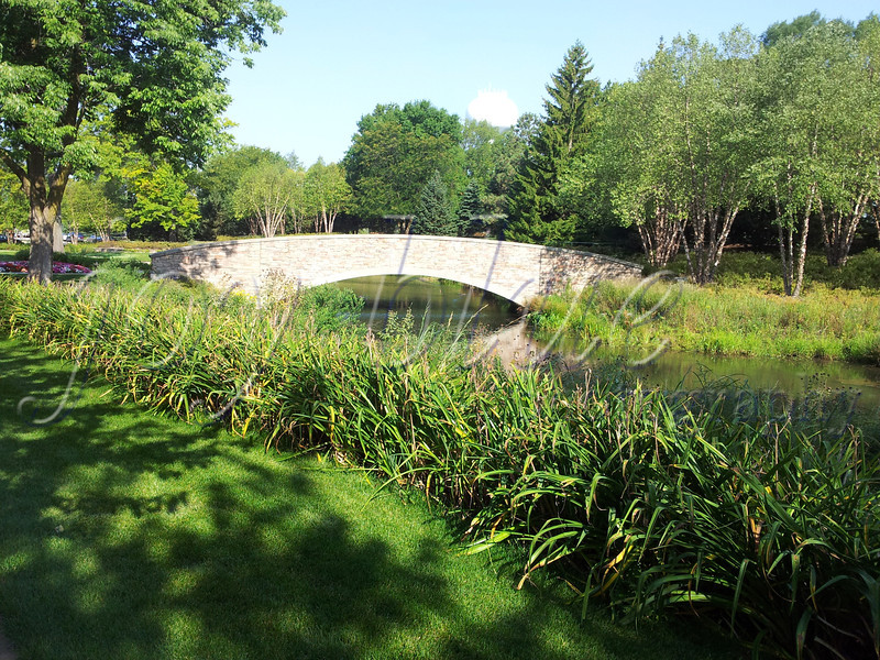 <b>Day 304—31 August 2012 Bridge over peaceful waters</b>  It was certainly too hot (and sticky!) to walk outside by the time I made my way to Barrington this morning to pick up Dawn. But, I'm glad I did! We had a great walk & talk, through sights like this.