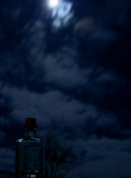 Moonlit Night<br /> <br /> 76/365