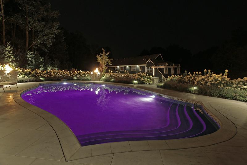 LED lights-Purple