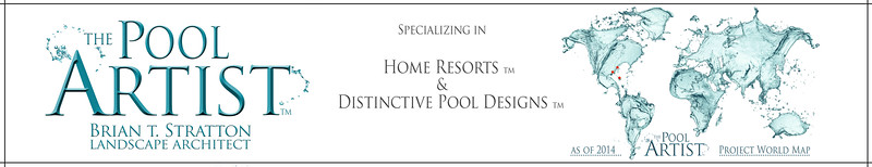Pool Artist-Graphic for Website Home Page2