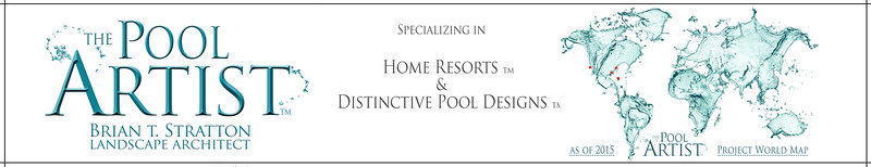 Pool Artist-Graphic for Website Home Page