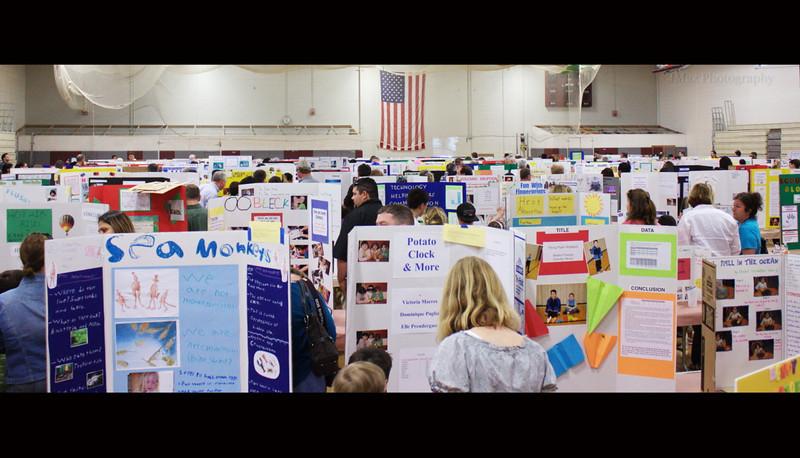 Science Fair - 134/365
