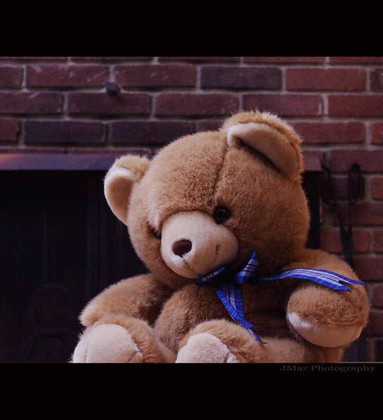 Willing Bear - 050/365