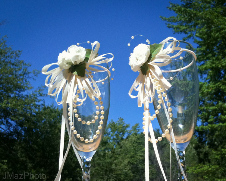 Wedding Toast - 241/365