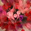 Flower Burst - 087/365