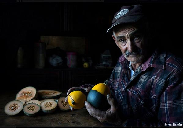 © Jorge Bacelar