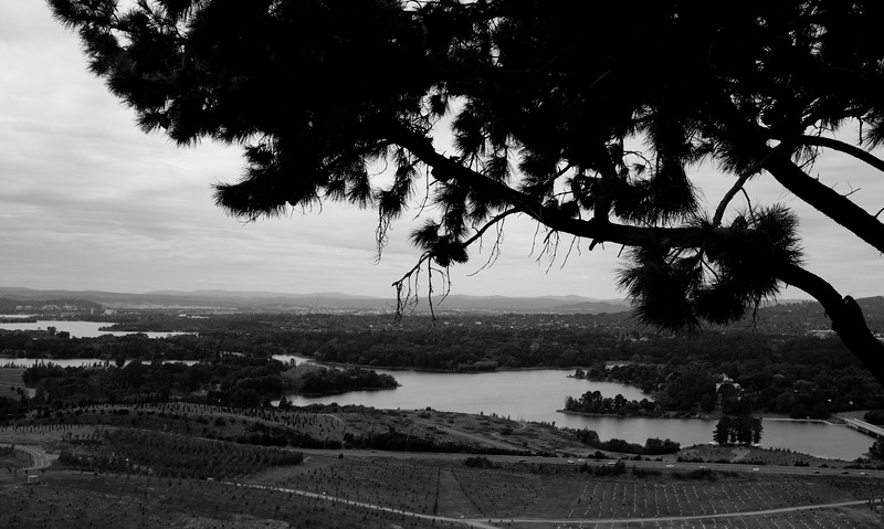 View to Parliament House from the Arboretum