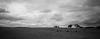 Canberra Grasslands