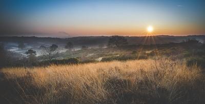 Sunrise @ Veluwezoom