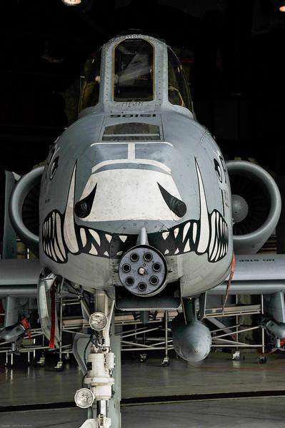 110416_Seymour-Johnson Air Show_002    Business end of an A-10 Warthog