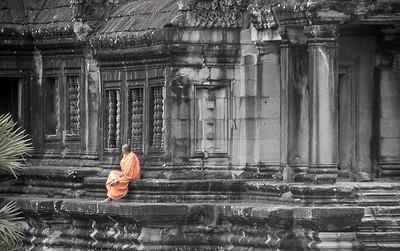 Contemplative Monk