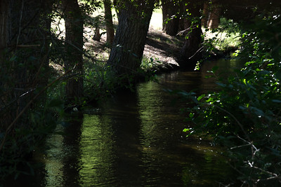 Camp ground Creek