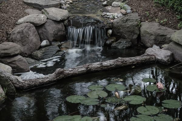 Quiet Wee Falls