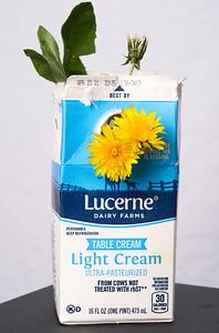 Dandy Cream